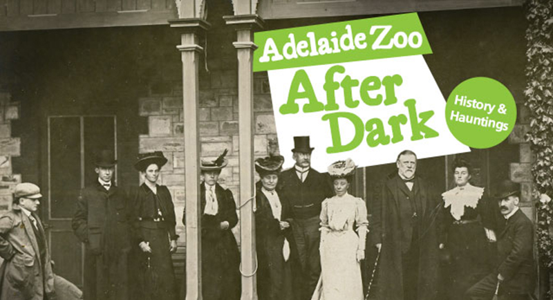 Adelaide Zoo after Dark - Haunted Horizons Ghosts
