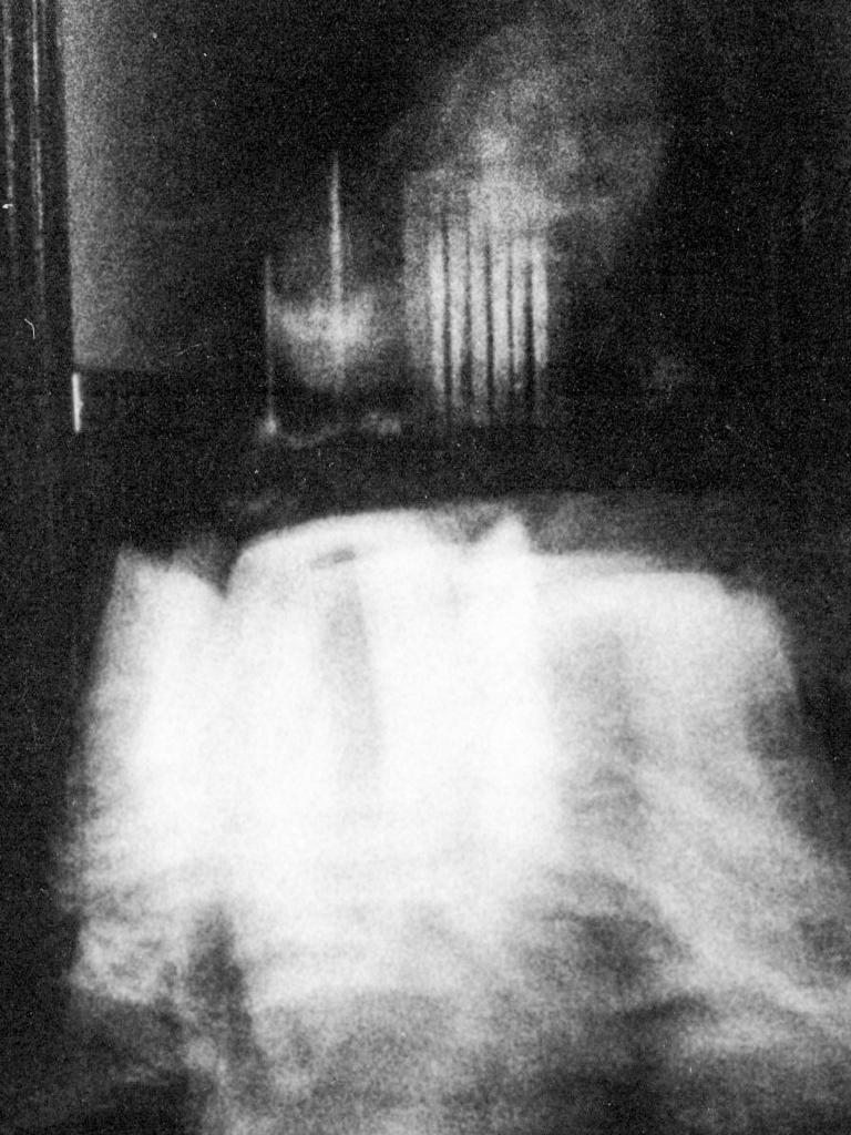 Golden Fleece Ghost - Old Spot Gawler